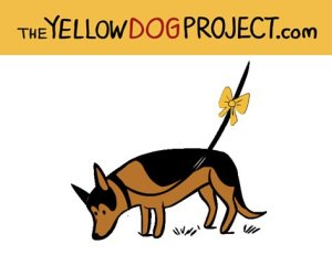 A yellow ribbon on a dog leash sends an important message