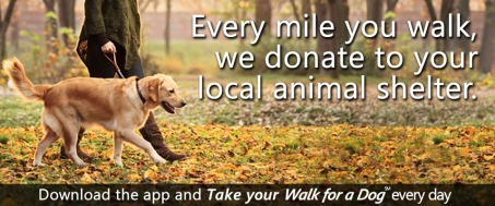 Walk_for_a_Dog_home1