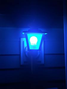 Blue Light Week idea goes viral across nation